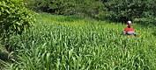 Nyetablerte sentre skal bedre matsikkerheten i Kenya og Tanzania