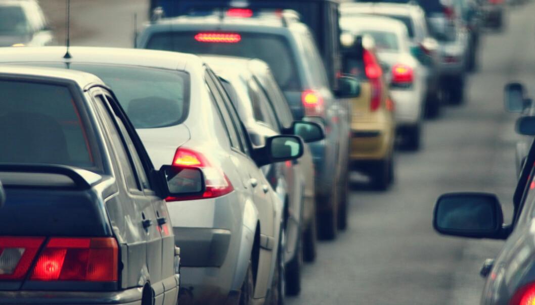 Påstanden om at cannabisbrukere har en «kronisk rus» som gjør dem farlige i trafikken i lang tid kan vanskelig stemme, skriver kronikkforfatteren. (Foto: Kichigin / Shutterstock / NTB scanpix)