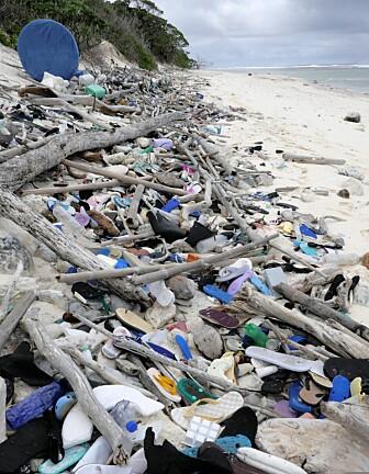 Flere sko og andre plastgjenstander på en annen strand. Denne er på South-øya. (Bilde: Silke Stuckenbrook)