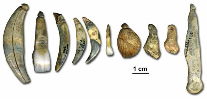 Eksempler på noen av de smykkegjenstandene neandertalere i Grotte du Rennes kunne lage for 42 000 år siden. Gjenstandene finnes i Musée National de Préhistoire de Eyzies-de-Tayac i Frankrike. (Foto: Marian Vanheren)