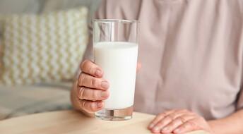 Melkeprotein regulerer blodsukkeret hos overvektige