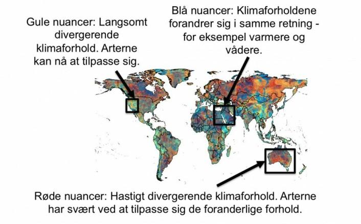 Et nytt kart viser hvor det er mest sannsynlig at de nye klimaregimene og artsblandingene oppstår. Skraveringen indikerer både hvilken type endring som er underveis, og med hvilken fart forskerne forventer at de vil finne sted. (Foto: (Illustrasjon: Alejandro Ordonez))