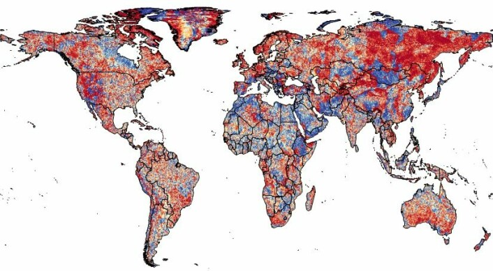 I det meste av verden beveger temperatur- og nedbørstendensen seg i motsatt retning, vist her ved rød skravering. Visse steder har det for eksempel blitt varmere, men samtidig også mer tørt. Det legger stort press på dyr og planter. (Foto: (Illustrasjon: Alejandro Ordonez))
