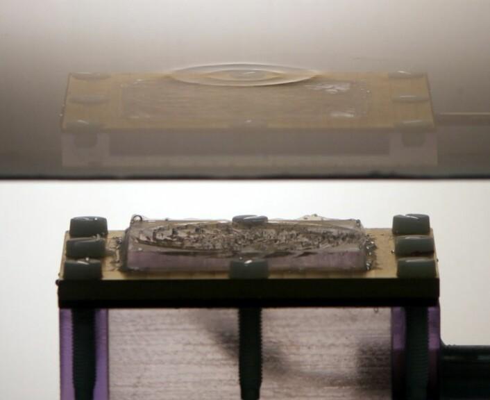 Her ser du tydelig den 3D-printede platen som ligger oppå høyttaleren. Formene på platen styrer lydbølgene til å lage to ringer på vannoverflaten over høyttaleren. (foto: Kai Melde)