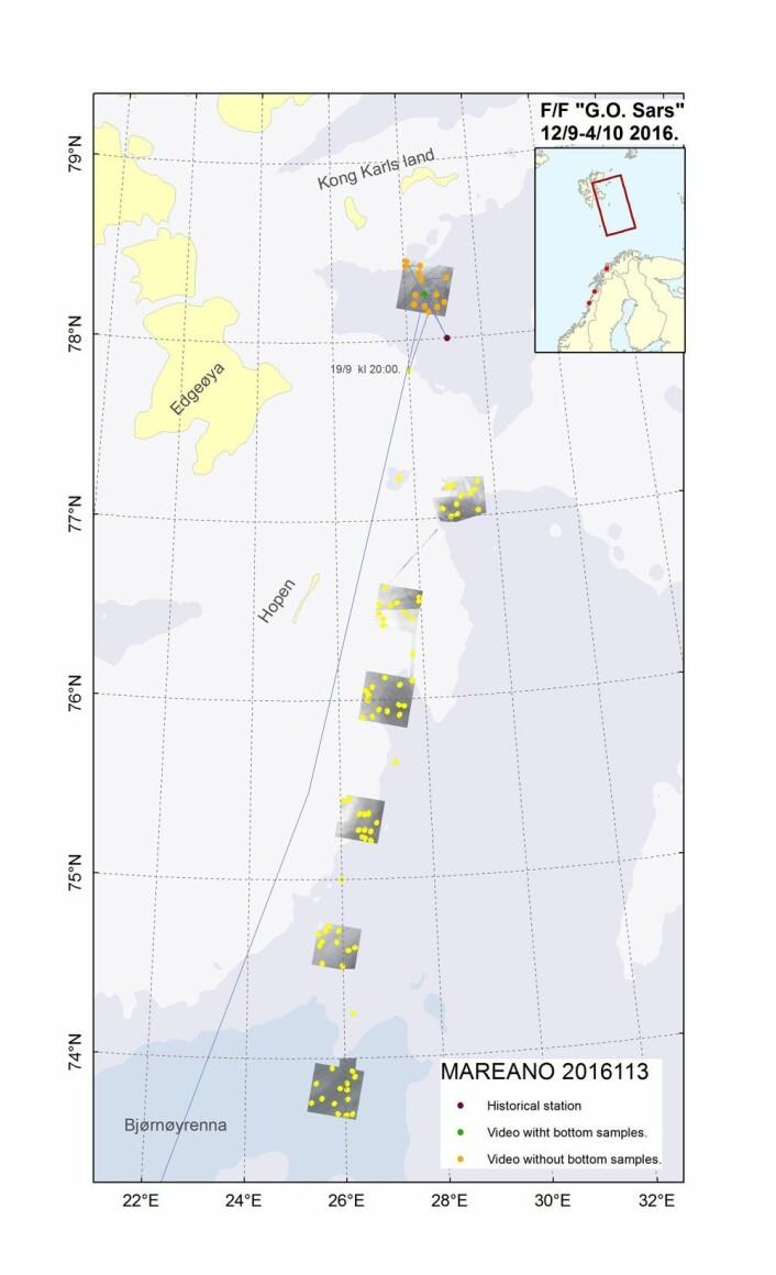 Området vi har undersøkt så langt ligger nord for Hopen-banken, sørøst for Kong Karls Land. (Foto: (Kart: Mareano/Havforskningsinstituttet))
