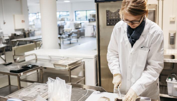 Tone Mari Rode er forsker i Nofima, og jobber med hvordan man med ulike pakkemåter og ulike måter å prosessere fisken på, kan forlenge holdbarheten på utvannet tørr-, salt- og klippfisk. Foto: Tommy Ellingsen © Nofima