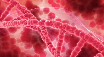 Innledende forsøk viser at blodprøve kan avsløre tilbakefall av tarmkreft