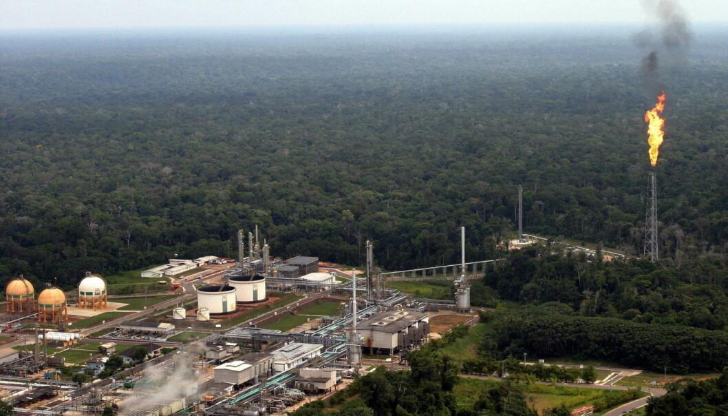 Det bygges stadig fabrikker helt inne i jungelen. Oljeselskapet Petrobras driver dette olje- og gassanlegget i Amazonas. (Foto: Jamil Bittar/Reuters)