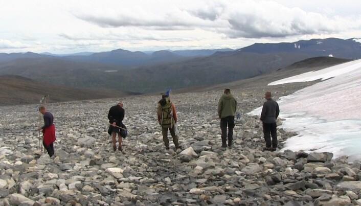 Pilspisser fra steinalderen smelter fram fra isen i Jotunheimen