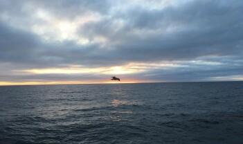 På forskningstokt for å kartlegge Barentshavet