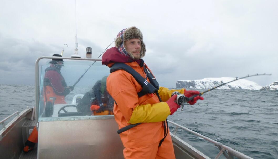 Martin Malmstrøm, også kalt brosme-kongen, fisker etter gener.  (Foto: Michael Matschiner)