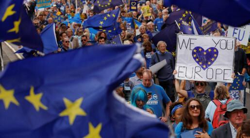 –I praksis er det helt umulig å ha andre regler enn EU