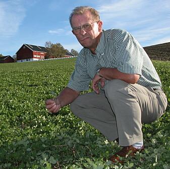 Hans Stabbetorp har forsket på korn i flere tiår. (Foto: Jon Schärer)