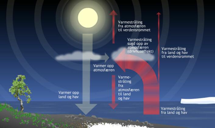 Skyer kan stanse noen av solas stråler (hvite). Da blir det kaldere. Når jorda varmes opp, stråler den ut mer langbølgede infrarøde stråler (røde). Skyene speiler disse tilbake til jorda. Det kalles drivhuseffekten. Denne figuren er hentet fra en multimedia som forklarer drivhuseffekten nærmere og lar deg variere mengden av drivhusgasser. Prøv den her! (Figur: Arnfinn Christensen, forskning.no) (Foto: (Figur: Arnfinn Christensen, forskning.no))