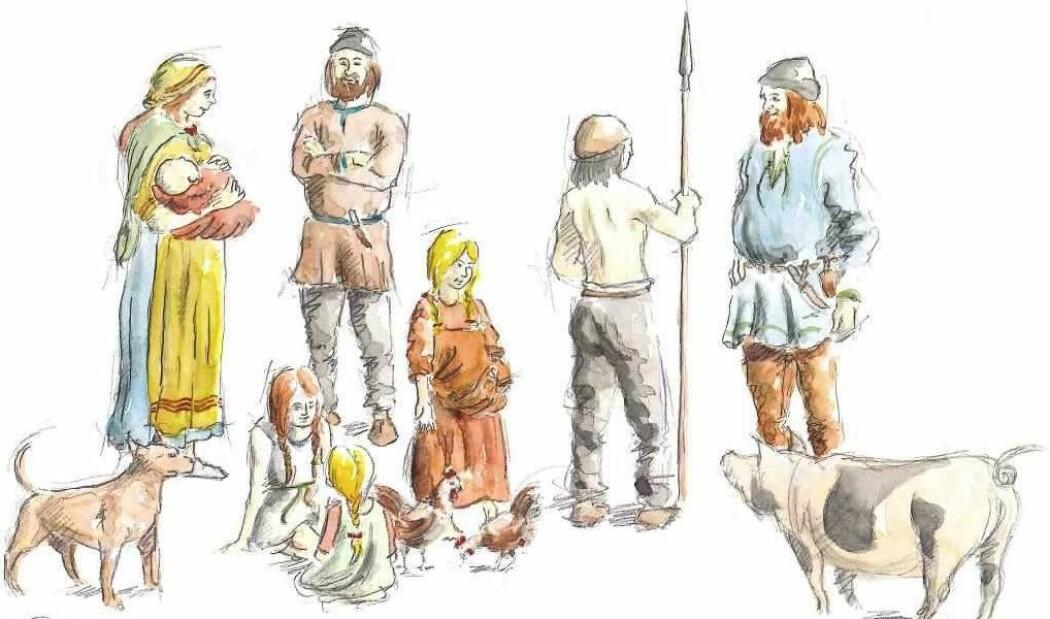 Fagfolk har gjerne forestilt seg en tydelig arbeidsdeling mellom kvinner og menn i vikingtida, hevder arkeolog Marianne Moen. – Tegningene viser kvinner som lager mat og holder barn. Menn er de aktive, de som var i kamp, sier hun. Kanskje var det ikke slik likevel. Her er en tegning fra boka «Vikinger i Vest» fra 2009. (Illustrasjon: Peter Duun)