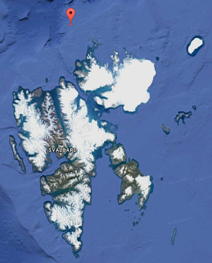 """Forskerne om bord på """"Helmer Hanssen"""" fikk ei håkjerring i trålen på 81 grader, 06.86 minutt nord og 17 grader, 51.77 aust. (Foto: (Kart: Googlemaps))"""