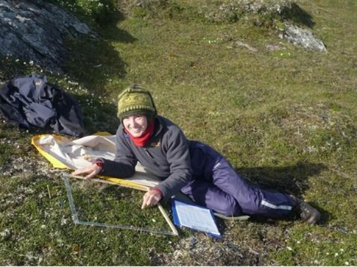 Masterstudent Saskia Bergmann leter etter insektspor