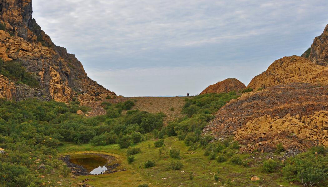 De røde fjellene på øya Leka i Trøndelag (foto: Leif Rune Jensen).
