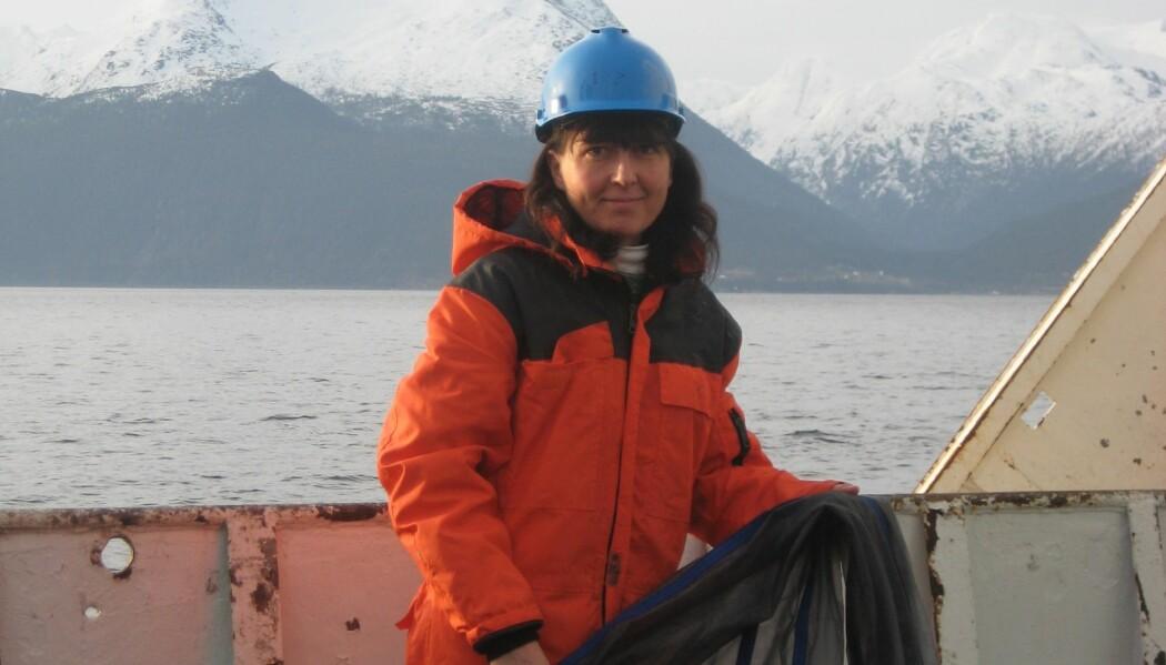 Tone Falkenhaug og kollegaene skal på jakt etter de ukjente hoppekrepsene langs norskekysten. Til slutt har de kanskje funnet flere nye arter. (Fotograf: Else Thorstensen / Havforskningsinstituttet)