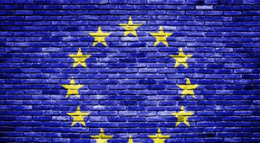 EUs forskningssamarbeid får skryt