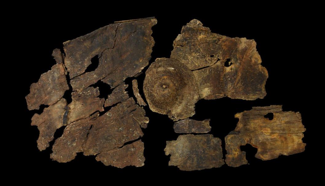 Slik så bark-skjoldet ut etter at arkeologene hadde vasket det. (Foto: Mike Bamforth, ULAS)