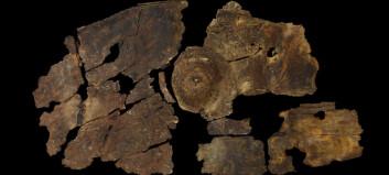 2300 år gammelt skjold av bark funnet i England