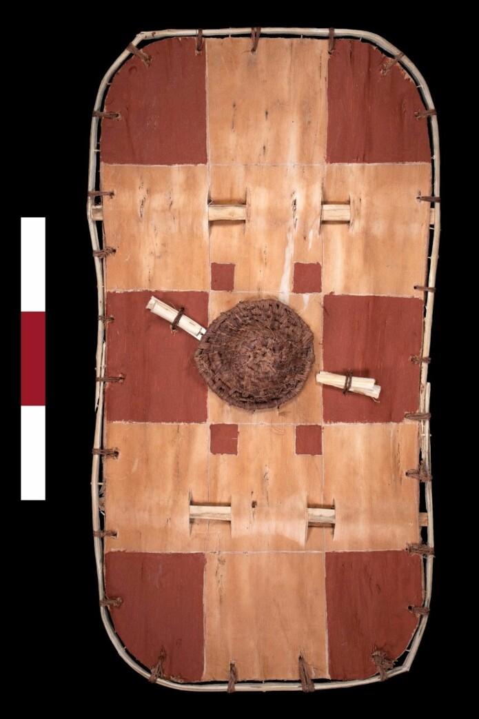 Slik ser skjoldet som forskerne har rekonstruert ut. Det røde rutemønsteret fant forskerne spor etter på skjoldet de fant. (Foto: ULAS)