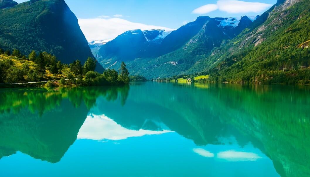 Algen Emiliania huxleyi er vanlegast i periodar med varmt vatn og rolege vindforhold. Den gir grøn farge i fjorden. (Foto: Nataliya Nazarova / Shutterstock / NTB scanpix)