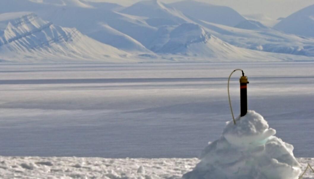 Fra 2013 til 2015 har Thomas Beka samlet data ved 80 slike stasjoner i den sentrale og nordvestlige delen av Spitsbergen. (Foto: Privat)