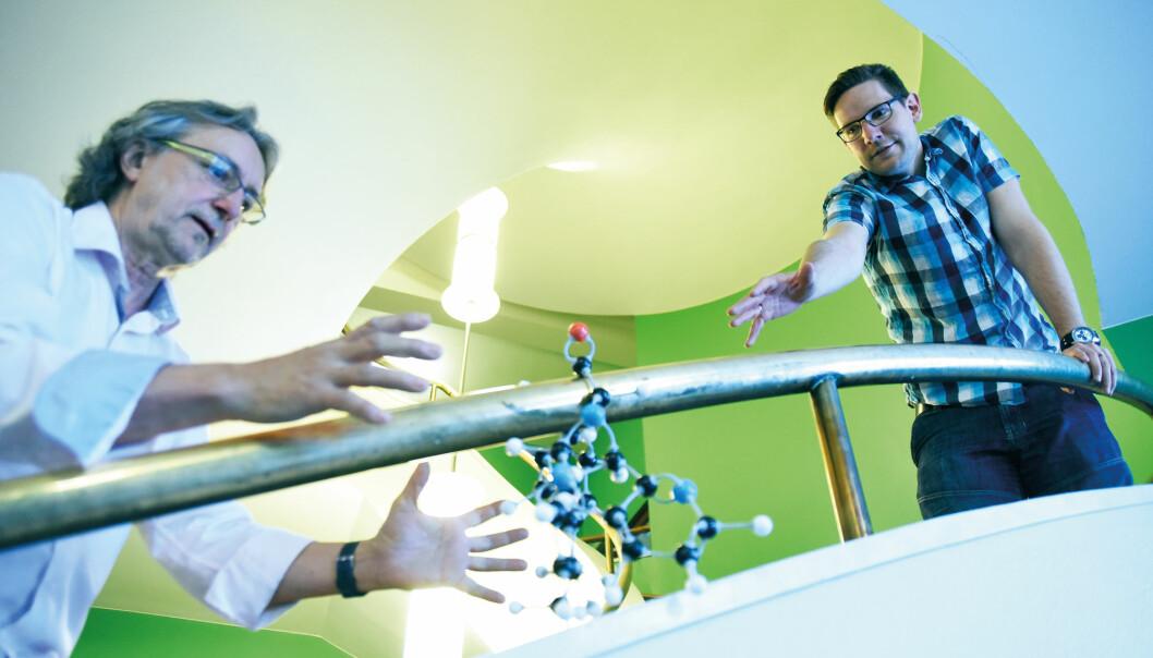 – Vi har designet en gruppe molekyler som bakteriene ikke kjenner igjen fra naturen. Disse molekylene forstyrrer den livsviktige sinkbalansen i bakteriecellen, og dermed også bakteriens evne til å ødelegge antibiotika, forteller Pål Rongved og Alexander Høgmoen Åstrand.  (Foto: Ola Sæther)