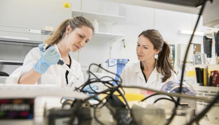 Ved Nasjonal kompetansetjeneste for bevegelsesforstyrrelser i Stavanger, forsker Jodi Maple Grødem (t.h.) på sammenhengen mellom Parkinsons sykdom og demens. Her er hun på laboratoriet sammen med kollega Marthe Førland. (Foto: Kim Laland).