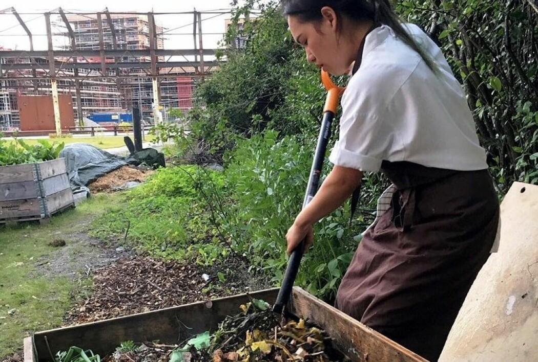 Alle grønnsaksrester ved Michelin-restauranten Credo komposteres og sendes tilbake til gården grønnsakene kom fra. (Foto: Credo)