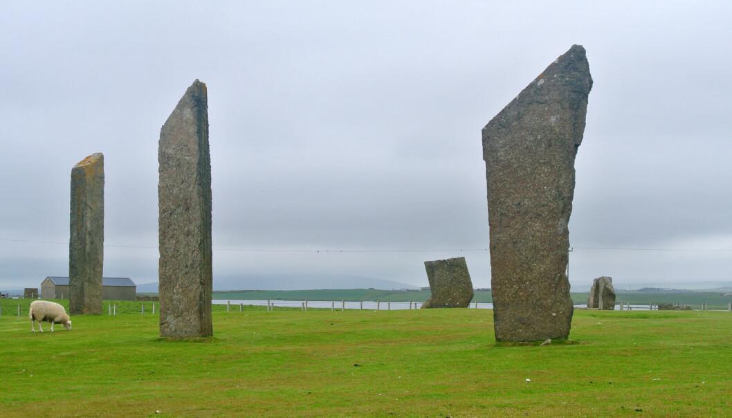 Bautasteinene i Stenness på Orknøyene. Steinene er del av en ring, og monumentet har vært en del av den nye undersøkelsen. De er mer enn 5000 år gamle. (Foto: Wilson44691/CC0)
