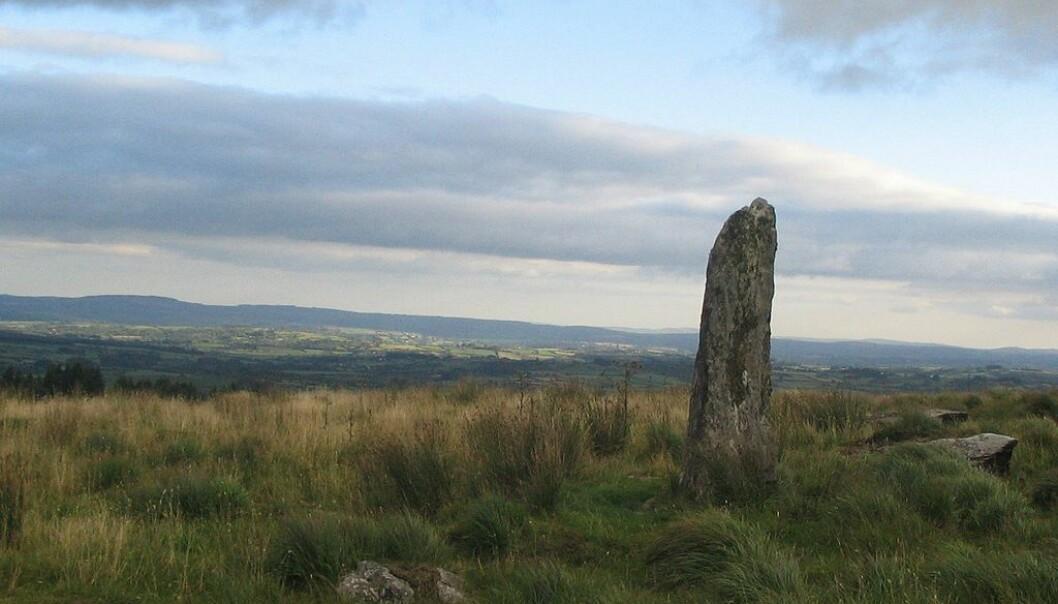 Bautastein i Cork i Irland. Noen vikinggraver ligger i nærheten av denne typen monumenter, som kan være tusenvis av år gamle.  (Foto: Ceoil)