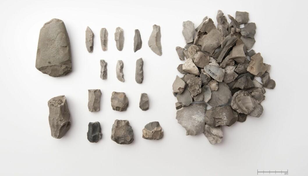 Disse redskapene fra steinalderen ble funnet på en boplass på Nedre Horpestad på Klepp i Rogaland. Her ser vi vespestadøks, pilspiss, mikrolitt, flekker, kjerner og avslag.   (Foto: Terje Tveit, Arkeologisk museum, Universitetet i Stavanger)