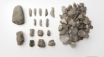 Disse steinene forteller om innvandring i steinalderen