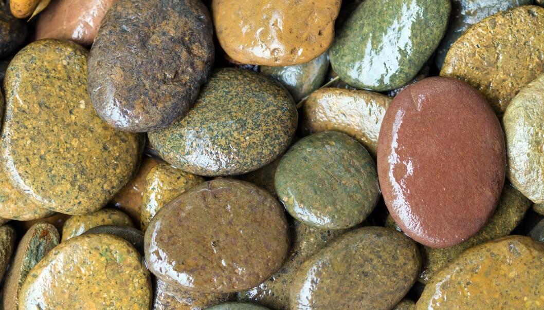 Når steiner på bunnen av en elv er glatte, er årsaken ofte at de er dekket av biofilm. (Foto: Colourbox)