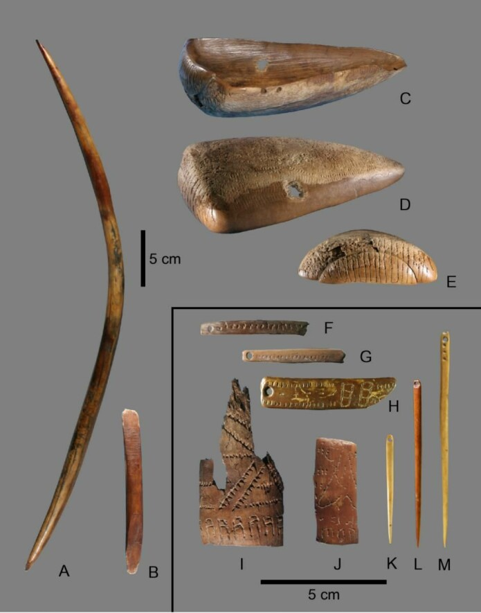 Leiren Jana Rhs er oppkalt etter neshornet, da forskere blant annet har funnet redskaper laget av horn fra neshorn og støttenner fra mammuter i nærheten. (Foto: Vladimir Pitulko)