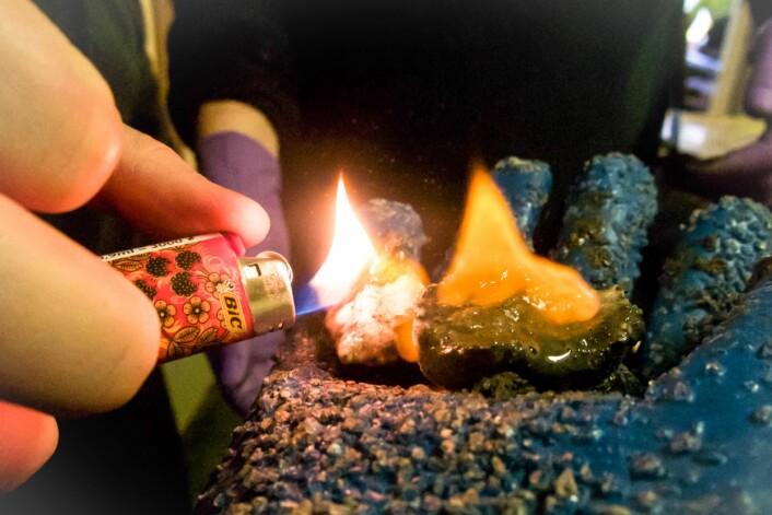 Gasshydrater er også kjent som is som brenner da det inneholder store mengder energi i form av metangass. (Foto: CAGE)