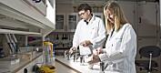 Forskere gir råd for bedre mattrygghet