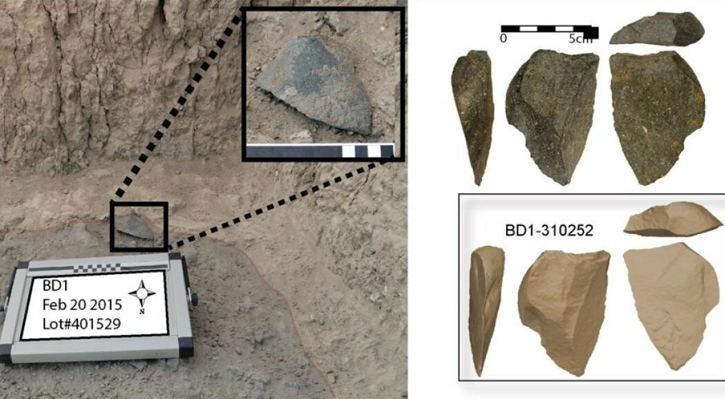 Disse steinverktøyene ble funnet nordøst i Etiopia. Nederst til høyre er en 3D-modell av steinene. (Foto: David R. Braun)