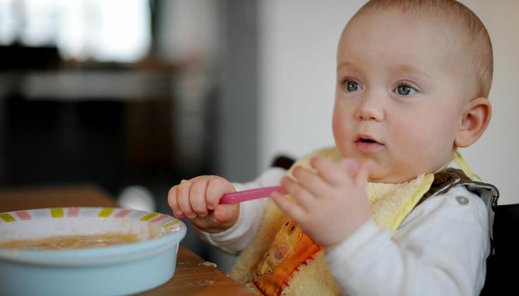 Det tar tid å lage barnemat, som regel må den både kokes, stekes, moses og fryses. Nå viser en ny studie fra Storbritannia at barnematen fra butikken kan være like så bra, om ikke bedre, enn hjemmelaget mat. (Foto: Frank May / NTB scanpix)