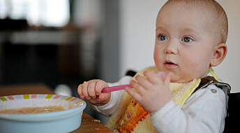 Hjemmelaget barnemat er ikke bedre enn den du kjøper i butikken