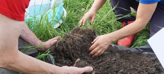 Gi de gode agronomene en sjanse til å overleve økonomisk