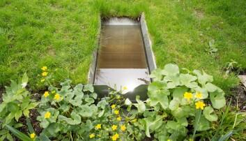 I denne dammen fylles regnvann opp og kan brukes til vanning i tørrere vær. (Foto: Håkon Sparre)
