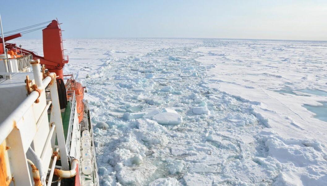 For 50 millioner år siden var temperaturen her i Polhavet trolig 15–20 grader høyere enn i dag. (Foto: Matthias Forwick)