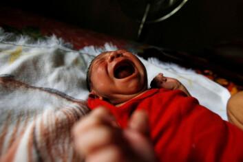 Gravide som blir smittet av zikaviruset risikerer å få barn født med mikrokefali, ifølge to uavhengige studier. (Foto: Jorge Cabrera / NTB Scanpix)