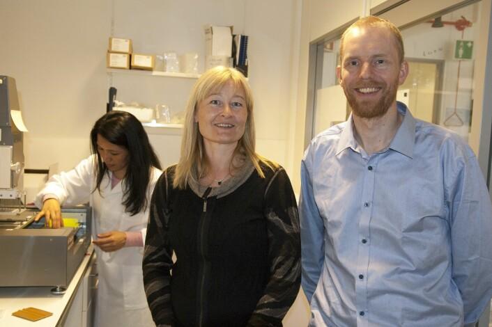 Bjørn Altermark (til høyre) og Hilde Hansen forsker på bakterier og plast. I bakgrunnen står avdelingsingeniør Man Kumari Gurung. (Foto: Karine Nigar Aarskog)