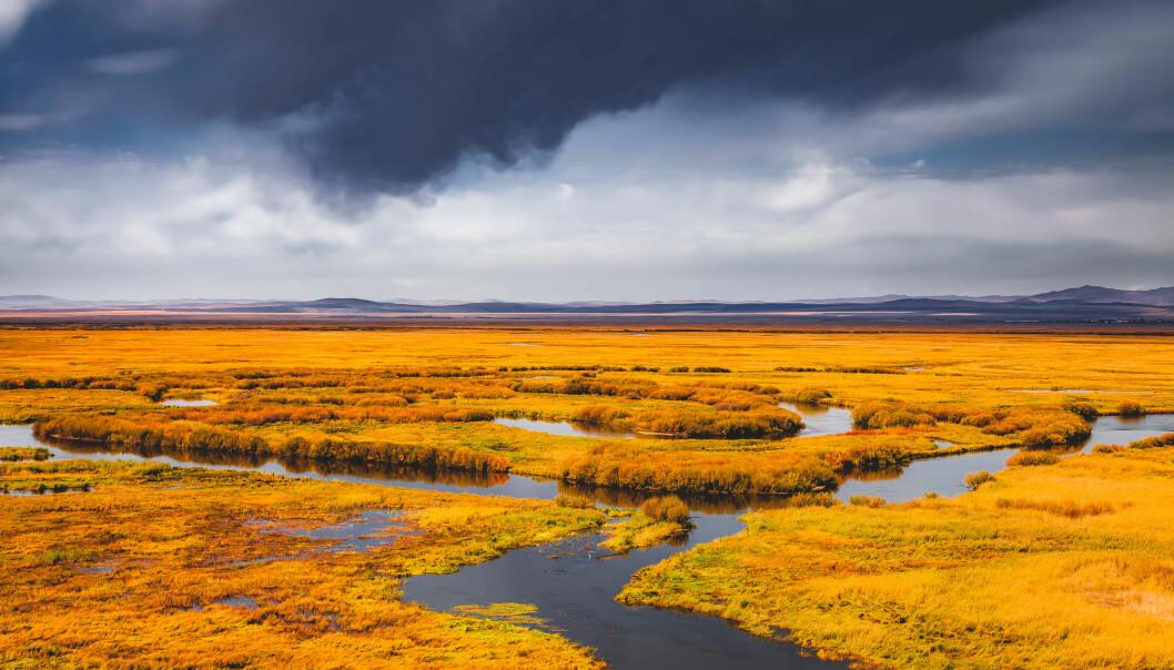 Våtmark er én av kildene til metanutslipp. Men forskerne er ikke sikre på hva som er kilden til den økte mengden metan i atmosfæren. (Illustrasjonsfoto: redstone / Shutterstock / NTB scanpix)