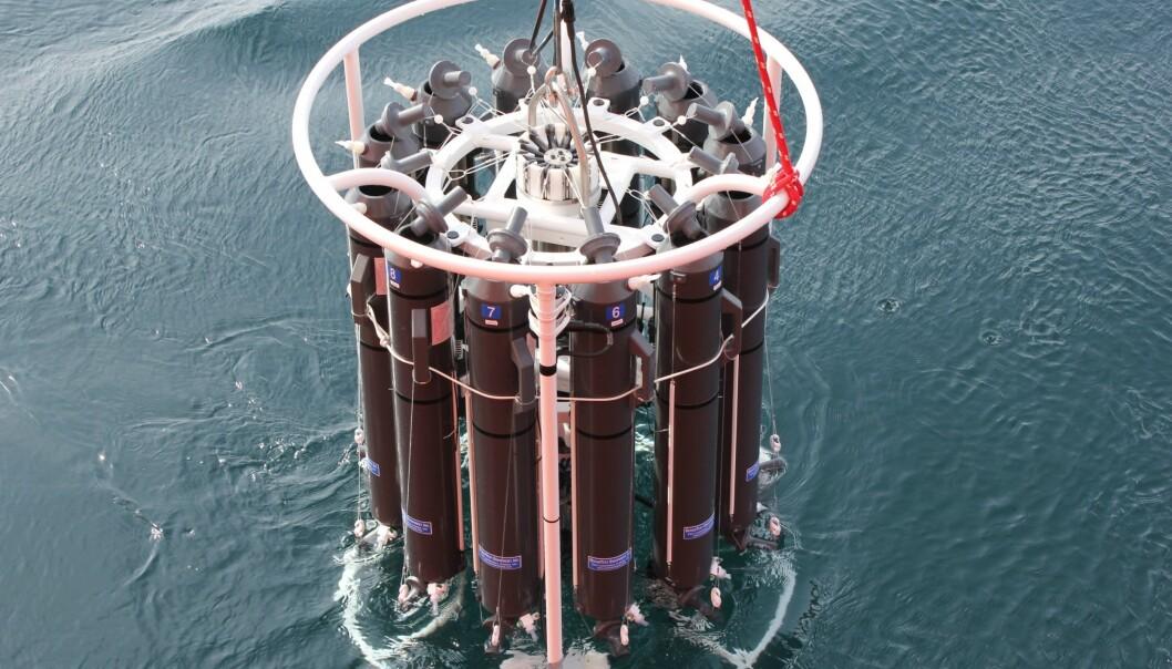 En prøvetakingsrosett med 12 flasker blir senket ned i sjøen for å ta vannprøver. (Foto: Kuria Ndungu, NIVA)